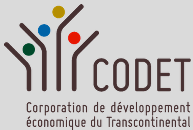 codet QC logo